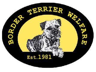 Border Terrier Welfare