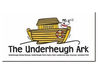 The Underheugh Ark (Scotland)