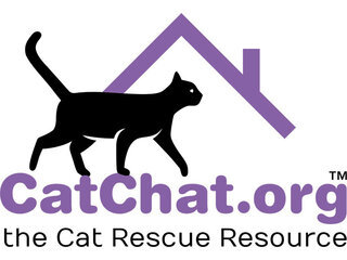 CAT CHAT, the Cat Rescue Resource