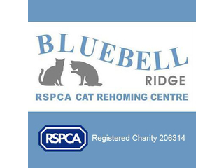 RSPCA Sussex East And Hastings Branch (Bluebell Ridge)