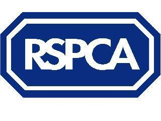RSPCA Hillingdon, Slough, Windsor, Kingston & District