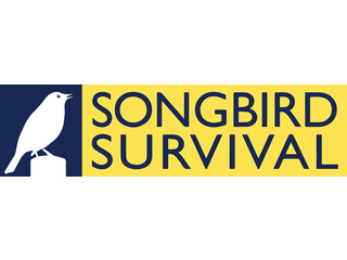 SONGBIRD SURVIVAL