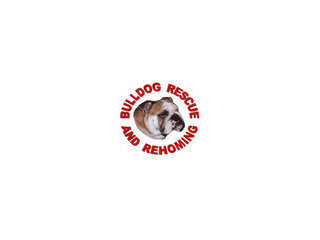 Bulldog Rescue & Re - Homing Trust