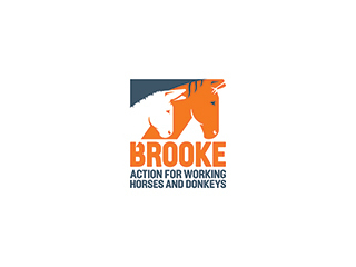 Brooke Action For Working Horses And Donkeys